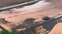 ARSLANBEY - Tarım Alanlarını Dolu Vurdu