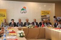 ŞANLIURFA VALİSİ - 'Uluslararası Mezopotamya Bisiklet Turu' Lansman Toplantısı
