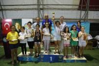 SATRANÇ FEDERASYONU - Mezitli'de 2. Satranç Turnuvası Sona Erdi