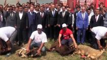 CUMHURBAŞKANI SEÇİMİ - MHP Mersin Milletvekili Adayları Partililerle Buluştu