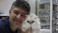CENAZE NAMAZI - (Özel) Veteriner Selçuk Çömlek Son Yolculuğuna Uğurlandı