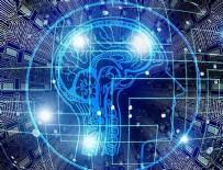 BILIM ADAMLARı - Zeka nöronlar arasında bağlantıyı azaltıyor