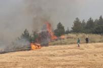 KARAKURT - Anız Yangını Ormana Sıçradı (1)