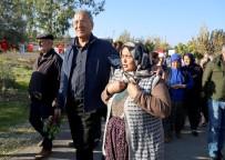 EYLEM PLANI - Dünya Sağlık Örgütü'nden Mezitli'ye Övgü