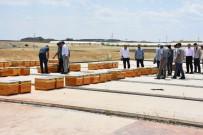 AHMET GAZI KAYA - Kahta'da Arıcılara Bin Kovan Kafkas Arısı Desteği