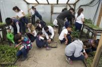 FEN BILGISI - Öğrencileri, Toprak Ve Hayvan İle Buluşturan Okul