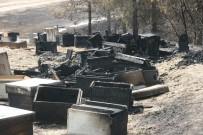 KARAKURT - İçler Acısı Manzara Orman Yangını Söndürülünce Ortaya Çıktı