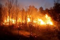 ANIZ YANGINI - Seydikemer'de Orman Yangını Açıklaması 20 Hektar Alan Yandı