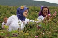 YABANCI TURİST - Ardıçlı Köyüne Turist Akını Devam Ediyor