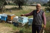 BAL ÜRETİMİ - Arıları Ölen Vatandaşa Kovan Desteği