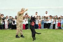 AYIŞIĞI - Jandarma Erzak Tespit Köpeği 'Bahis' Öğrencilerin Gözdesi Oldu