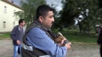 HAYVAN - Muş'ta Bitkin Halde Toy Kuşu Bulundu