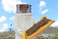 SANAYİ SİTESİ - Adıyaman'da Çiftçiler Arıcılığa Yöneliyor