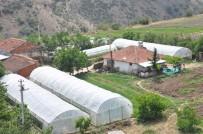TAZE FASULYE - Büyükşehirin Sağladığı Sera Desteği Üreticiyi Kalkındırıyor