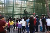 ZEUGMA - Çamlıca Okullarından Gaziantep'e Gezi