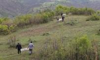 Kovancılar'da Doğaya Bin Adet Keklik Bırakıldı
