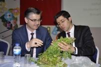 HASTALıK - Mihalgazi Ve Sarıcakaya'nın En Önemli Tarımsal Sorunları Çözüldü