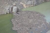 ÇORUH - Artvin'de Çoruh Nehri'ne Uçan Araçtaki 3. Şahsın Cesedi Bulundu