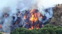 BÜYÜKŞEHİR BELEDİYESİ - Ayvalık'ta  Çöplük Yangını Ormanlık Alana Sıçramadan Güçlükle Kontrol Altına Alındı