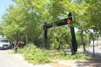 EVRENSEKI - Büyükşehir Belediyesi, Şehitler Ormanı'na Sahip Çıktı