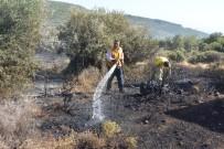 MAKİLİK ALAN - Çanakkale'de Makilik Yangını