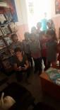 SOKAK KEDİSİ - Hacıeyüplü İlkokulunun Minik Misafirleri