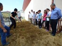Okullara Hobi Bahçeleri Oluşturulmaya Devam Ediyor