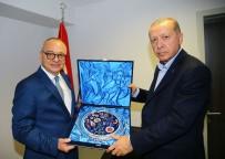 PORSELEN TABAK - Başkan Ergün Cumhurbaşkanı Erdoğan İle Bir Araya Geldi
