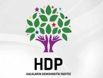 HDP - HDP AYM'ye başvurdu
