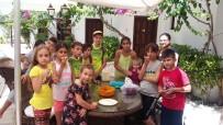 ALI TURAN - Malatyalı Sporcular Muğla'dan Dereceyle Döndü