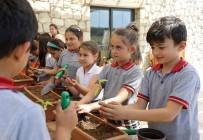BUCA BELEDİYESİ - Bucalı Çocuklar Tarımı Öğreniyor