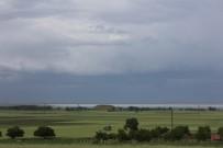 FLAMİNGO - Seyfe Gölü Kuş Cenneti Yağışlarla Şenlendi