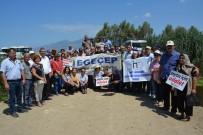 MENDERES NEHRİ - Söke'de Çevrecilerden Balık Ölümleri Eylemi