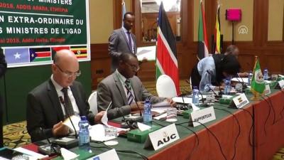Doğu Afrika Ülkeleri Güney Sudan İçin Olağanüstü Toplandı