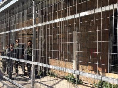 El Halil Camii Katliamı'nı Unutturmak İstemeyen Filistinlilerden 'Namazla Diren' Protestosu
