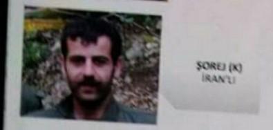 Giresun'da Etkisiz Hale Getirilen PKK'lıların Kimlikleri Ortaya Çıktı
