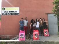 ALEYNA - Öğrencilerden Anlamlı Proje