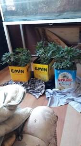 Uyuşturucu Üreten Ve Satan 3 Kişi Tutuklandı
