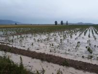 KRİZ MERKEZİ - Yağmur Suları Çatılardan Şelale Gibi Aktı