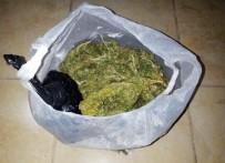 GÜMBET - Bodrum'da Uyuşturucu Operasyonu Açıklaması 2 Tutuklama