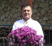 İSMAİL YILMAZ - Dünyanın Annelerine Antalya'dan 42 Milyon Dal Çiçek