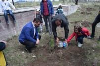 KAFKAS ÜNİVERSİTESİ - Kars'da Fidan Dikimi Yapıldı