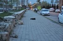 ŞÜPHELİ ÇANTA - Kars'ta Şüpheli Çanta Paniği