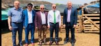 MUSTAFA ÜNAL - Rektör Ünal Yörük Çadırında