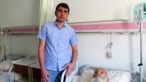 OSMAN KıLıÇ - 55 Torunlu Asırlık Çınar Ameliyatla Sağlığına Kavuştu