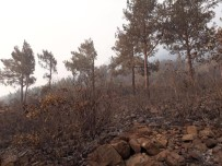 ORMAN İŞÇİSİ - Amanoslardaki Yangında Soğutma Çalışmaları Sürüyor