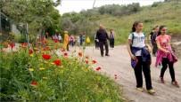 MEHMET ARSLAN - 'Koşabiliyorken Koş' Projesine Destek İçin Yürüdüler