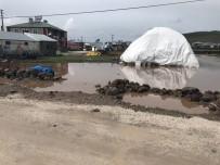 DAĞPıNAR - Dağpınar'da Yağmur Etkili Oldu