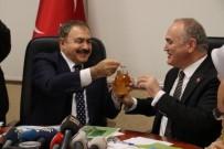ŞİFALI BİTKİLER - Bakan Eroğlu Açıklaması 'Bal Ormanları Kuruyoruz'