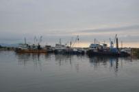 Balıkçı Tekneleri Onarımda